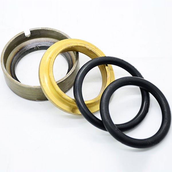 Shaft seal / mechanical seal for piston refrgeration compressor Manufacturers, Shaft seal / mechanical seal for piston refrgeration compressor Factory, Supply Shaft seal / mechanical seal for piston refrgeration compressor