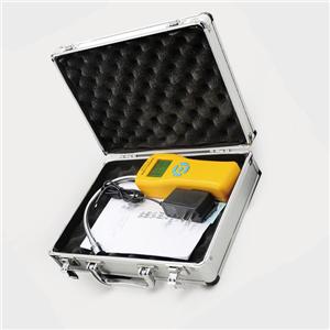 Handheld combustible gas detector alarm