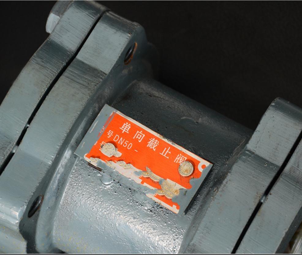one way check valve