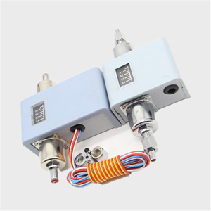 Differential pressure switch CWK-22