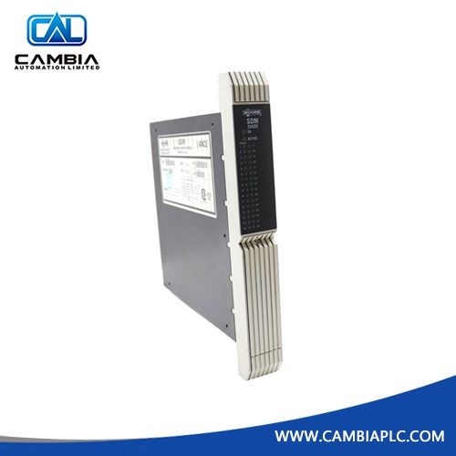 Moore 16101-174/8 39SDM024DCCBN Standard Discrete Module
