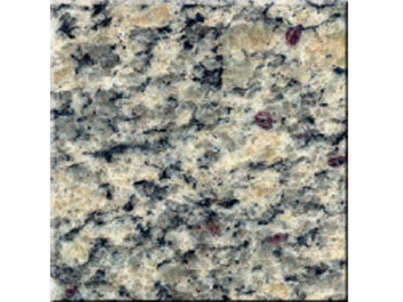 Santa Cecilia Light Plan de travail clair comptoir dalles en granit