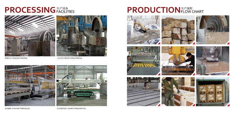 Production Facilities & Flow Chart