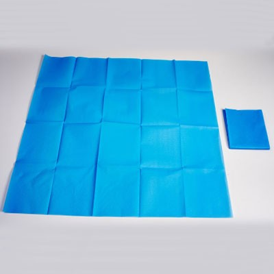 Disposable Plastic Bed Sheet