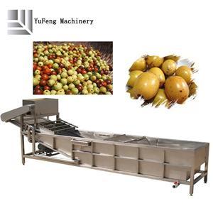 multifunctional फल तथा सबजी सफाई मशीन