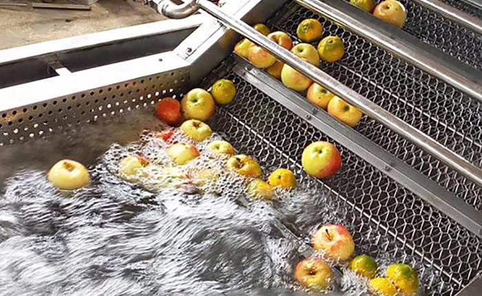 Fornecer automática máquina de lavar frutas e legumes em aço inoxidável