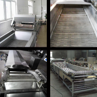 flexible packaging pasteurization line