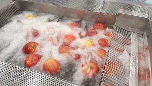 खाद्य कपड़े धोने की मशीन