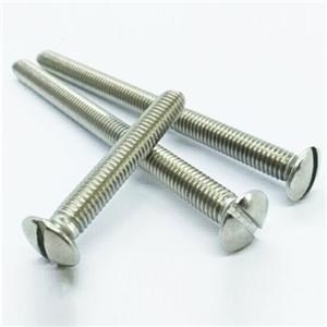 DIN964 Machine Screws Stainless Steel A2 A4
