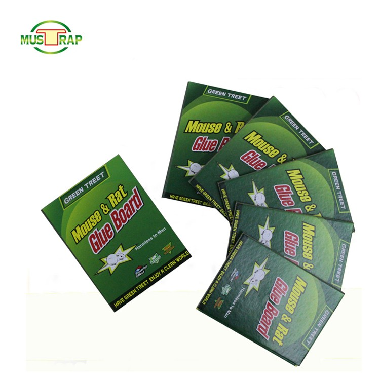 Humane Live Catch Mouse Bait Trap Manufacturers, Humane Live Catch Mouse Bait Trap Factory, Supply Humane Live Catch Mouse Bait Trap
