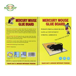 Big Deterrent Reusable Mouse Trap
