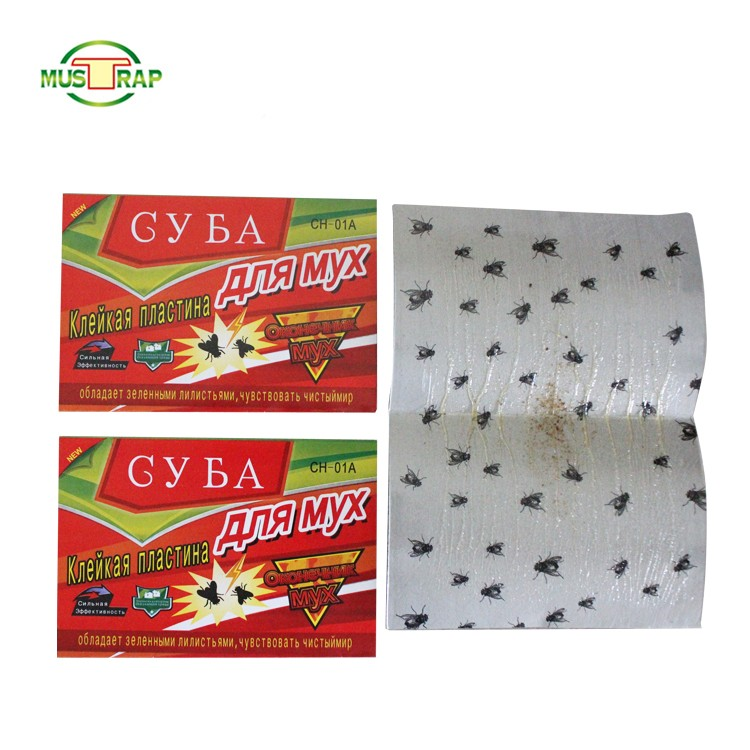 Eco-friendly Disposable Sticky Fly Glue Traps Manufacturers, Eco-friendly Disposable Sticky Fly Glue Traps Factory, Supply Eco-friendly Disposable Sticky Fly Glue Traps