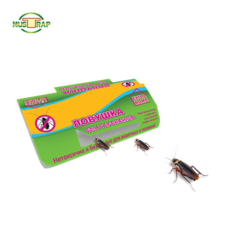 Easy Catching Non Poisonous Cockroach Bait Glue Trap Manufacturers, Easy Catching Non Poisonous Cockroach Bait Glue Trap Factory, Supply Easy Catching Non Poisonous Cockroach Bait Glue Trap
