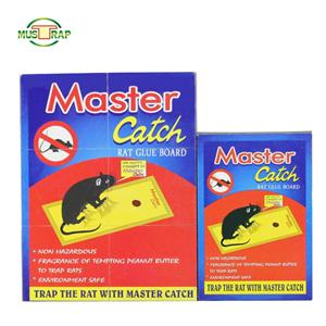 Factories Sell Affordable Good Quality Sell Mouse Catch