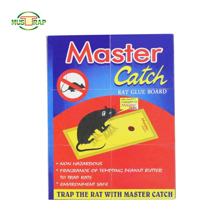 Factories Sell Affordable Good Quality Sell Mouse Catch Manufacturers, Factories Sell Affordable Good Quality Sell Mouse Catch Factory, Supply Factories Sell Affordable Good Quality Sell Mouse Catch