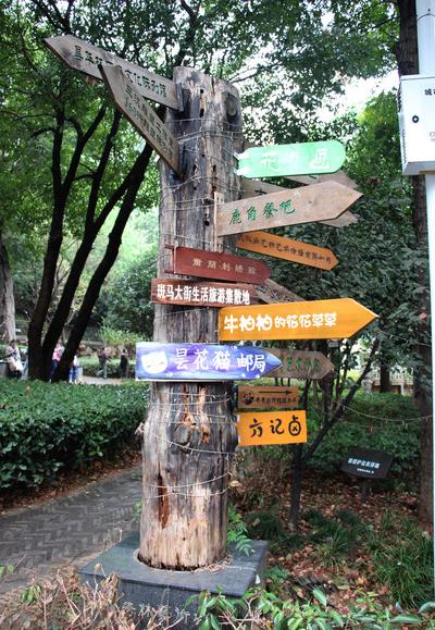 Signage Light Box