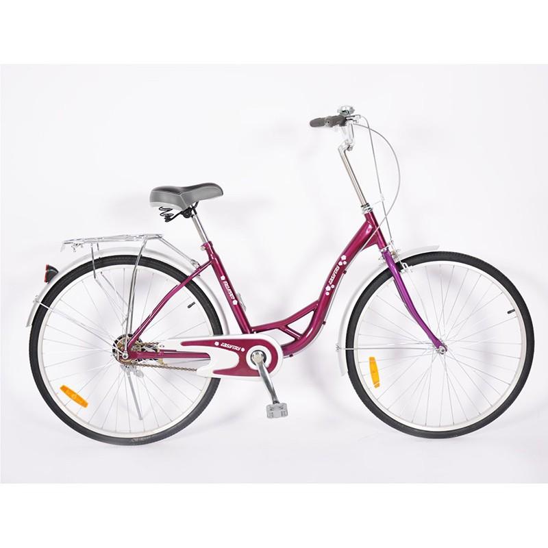 24 Inch Single Speed Ladies Used Brake Steel City Bike