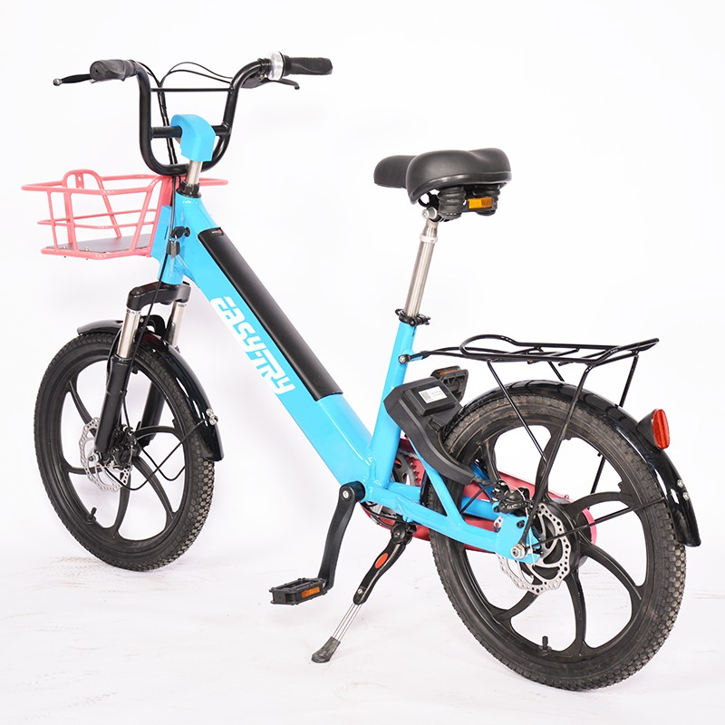suspension fork electric bike Factory, Discount trunk electric bike, the electric bike Price