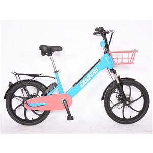 15ah Inner Aluminum Alloy Long Range Electric Bike