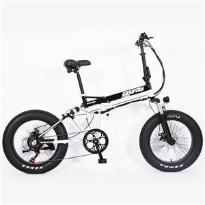 Portable 48V Aluminum Folding Delivery Electric Bike