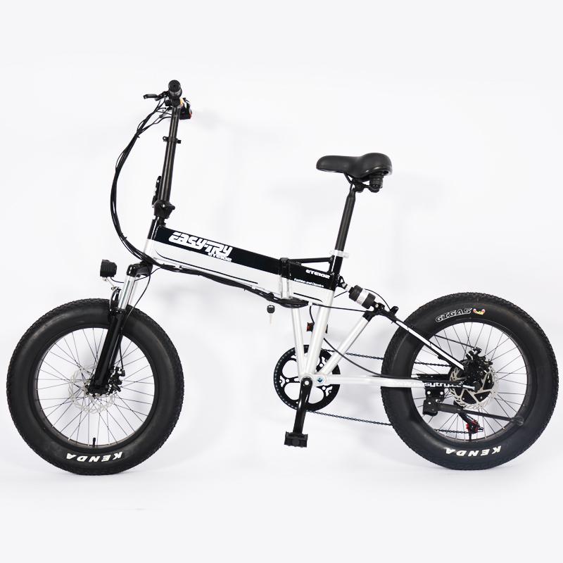 portable electric bike
