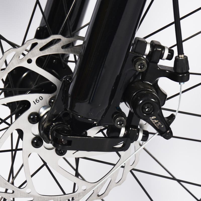 10ah electric bike