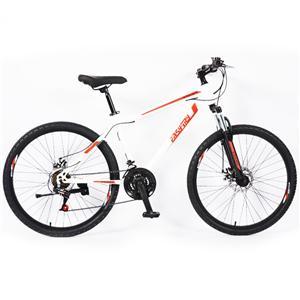 12 Speed Steel Brake Race Mountain Bike