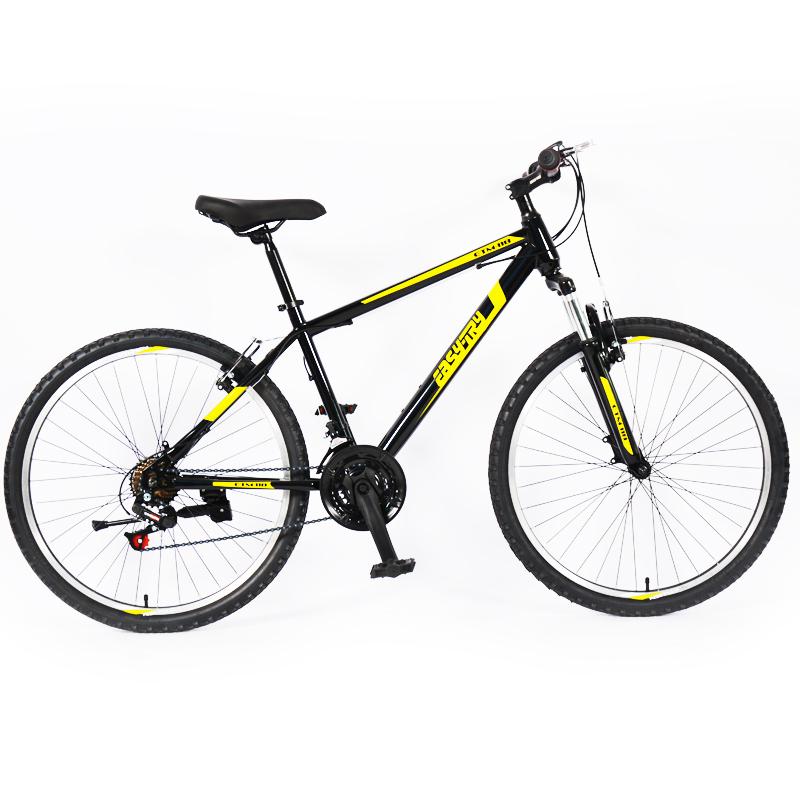 sport mountain bike