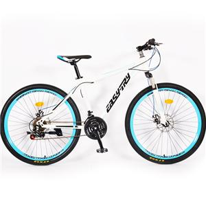 26 Inch China Cycles Carbon Fixed Gear Sports Bike