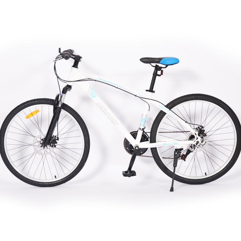 bicicleta pública sin cadena