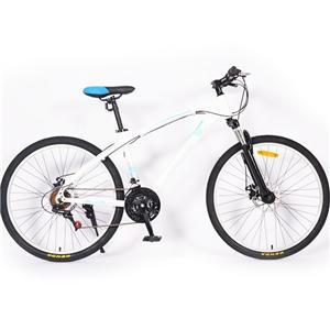 Disc Brakes 21 Gear White Suspension Fork Mountain Bike