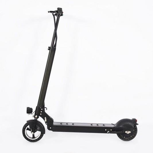 8 scooter d'alliage d'aluminium de 36V 10Ah 250W de pouce