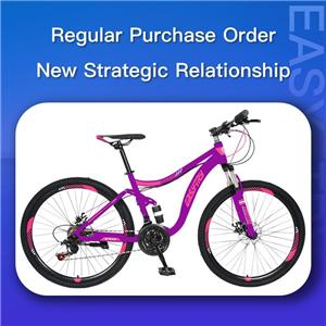 Regular Purchase Order, New Strategic Relationship