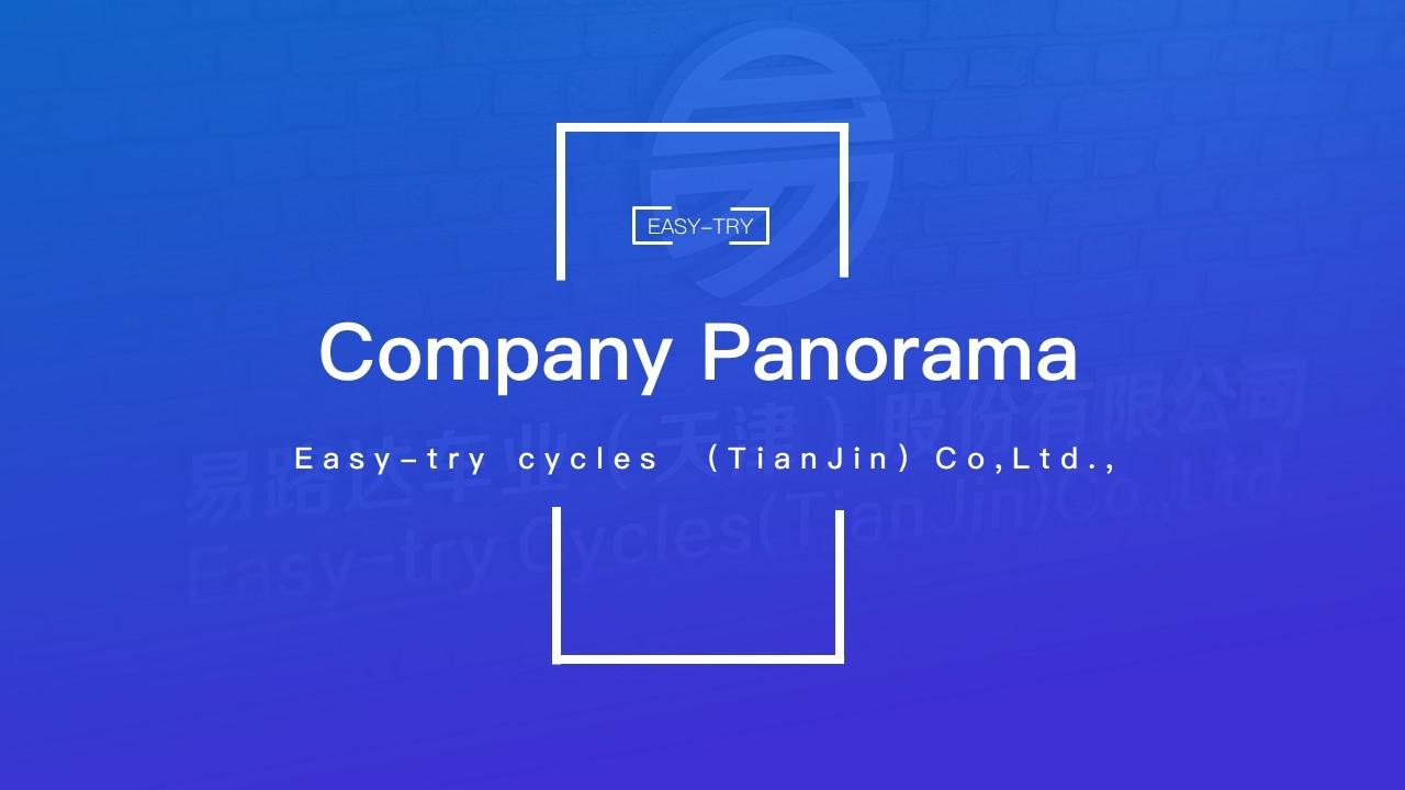 Panorama de la empresa