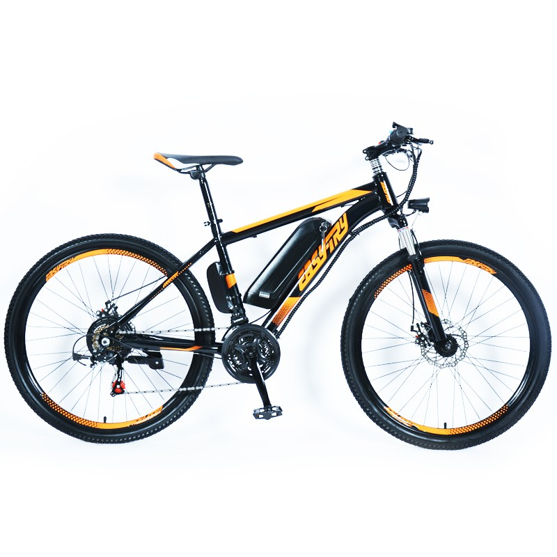 Hot high quality e bike china manufacturer customized 10Ah electric bike 36V/48V 250W/350W/500W electric mountain bike