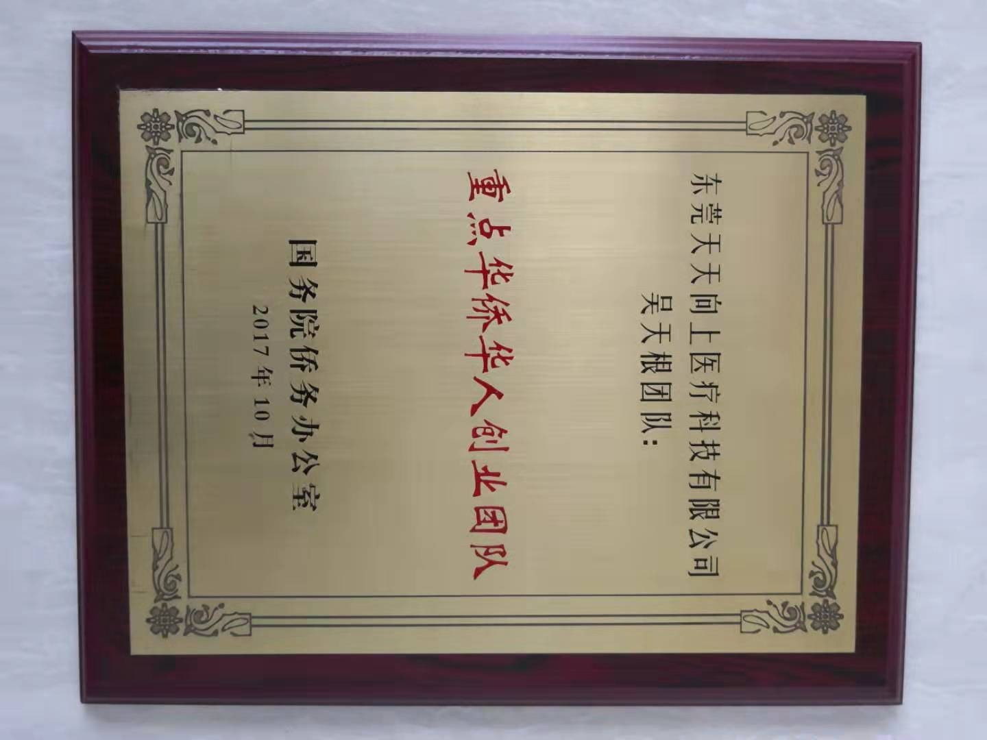Guangdong Innovation Team Certificate