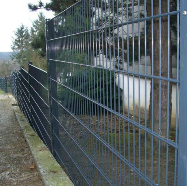 2D Double And Twin Wire Mseh Fence