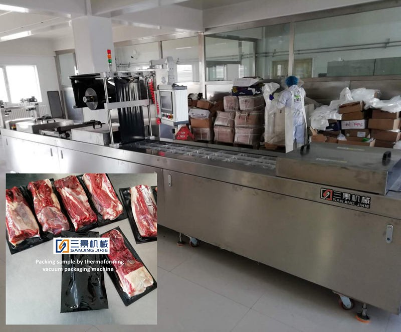 Thermoforming vacuum packing machine for beef