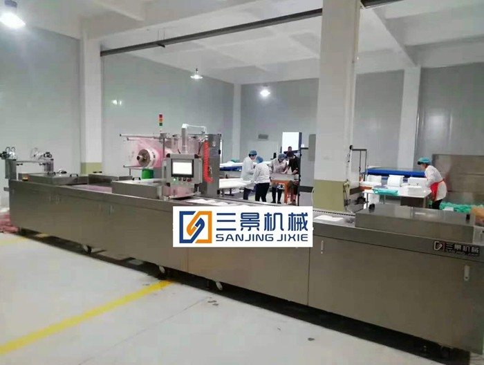 Rigid film Thermoforming Packaging Machines