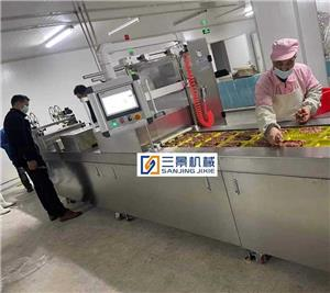 Rigid Film thermoforming Vacuum Packaging Machine
