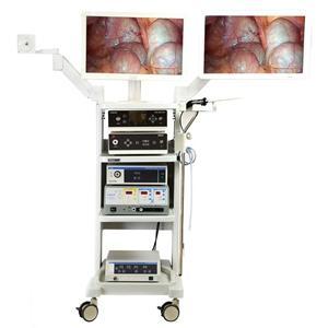 طبي عرض المراقبين إلى عن على طبيب بيطري المنظار