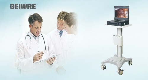 GEIWRE HD320 integrated endoscopic system