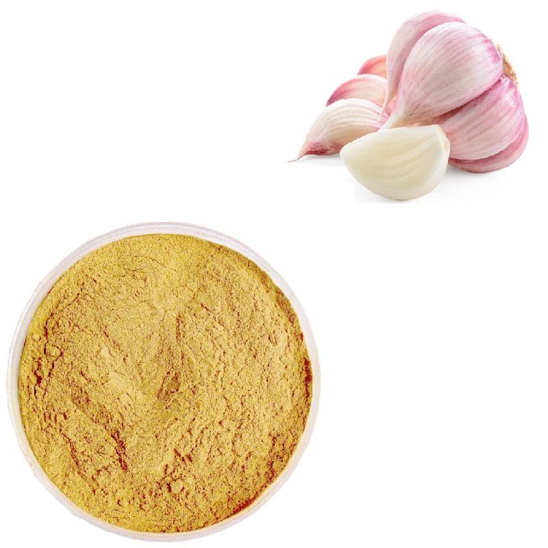 estratto di aglio in polvere
