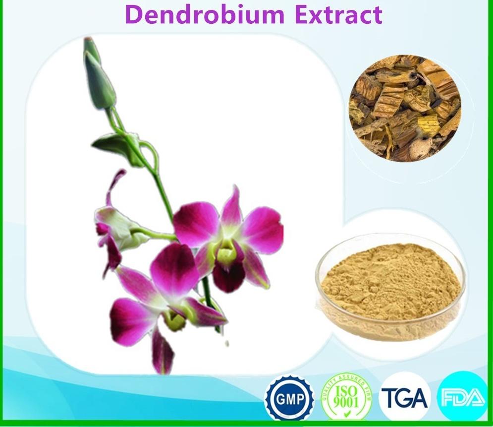 HerbaDendrobii P.E Dendrobium Extract