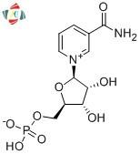 購入ベータNMN / BETA  - ニコチンアミドモノヌクレオチドNicotinatmide CAS1094-61-7,ベータNMN / BETA  - ニコチンアミドモノヌクレオチドNicotinatmide CAS1094-61-7価格,ベータNMN / BETA  - ニコチンアミドモノヌクレオチドNicotinatmide CAS1094-61-7ブランド,ベータNMN / BETA  - ニコチンアミドモノヌクレオチドNicotinatmide CAS1094-61-7メーカー,ベータNMN / BETA  - ニコチンアミドモノヌクレオチドNicotinatmide CAS1094-61-7市場,ベータNMN / BETA  - ニコチンアミドモノヌクレオチドNicotinatmide CAS1094-61-7会社