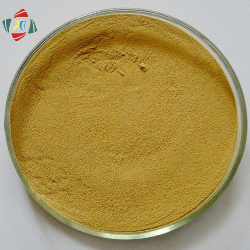 Competitive Price For Silymarin 80% Milk Thistle Extract /Silybum Marianum Extract Silibinin 30%