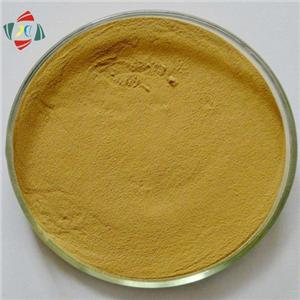 Competitive Price For Silymarin 80% Milk Thistle Extract /Silybum Marianum Extract Silibinin 30%