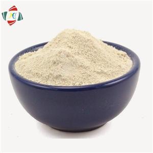 Garcinia Cambogia Extract HCA Hydroxycitric Acid