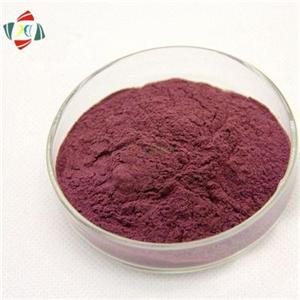 100% Natural Blueberry Extract 10% 50% 95%, Proanthocyanidins CAS 4852-22-6
