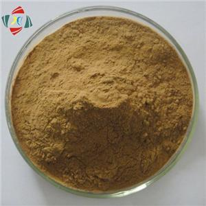 Amentoflavone CAS1617-53-4 Standard Sample For Research